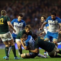Springboks utterly dominant in victory over Scotland