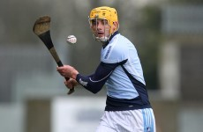 Limerick's David Breen dishes the dirt on his Na Piarsaigh teammates