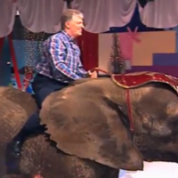 Your reminder that Pat Kenny opened the 2002 Toy Show on an elephant