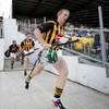 Return of the King — Fennelly delighted to see Shefflin back after 'horrible' season