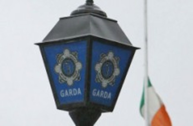 Gardaí seize €400,000 worth of cannabis plants