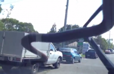 In Australia, look out for snakes on your windscreen wipers