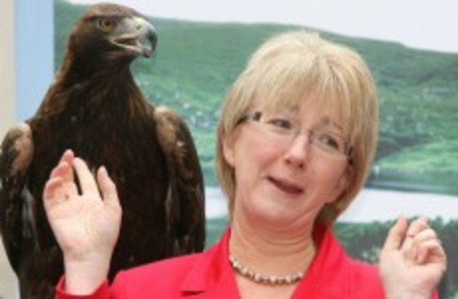 Mary Hanafin: I will run in the next general election