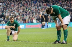 If you can bear to watch: Highlights of Ireland's 22 - 24 loss to New Zealand
