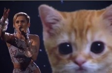 Miley Cyrus sang with a giant virtual kitten last night