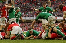 How is the Six Nations shaping up after the November Tests?