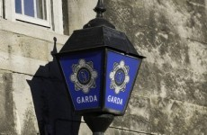 Man arrested after armed raid on Co Dublin shop