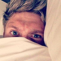 Niall Horan begs girls to stop calling his hotel room... it's The Dredge