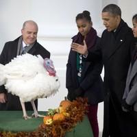 Obama pardons Popcorn, the National Thanksgiving turkey