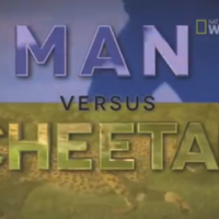 NFL star Devin Hester raced a cheetah... and won
