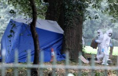 Man (27) arrested in connection with Phoenix Park murder