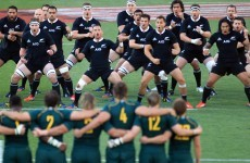 Same again? NZ's Jo'Burg visit to provide Rugby Championship climax in 2014