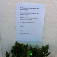 Stolen tree returned to Lusk launderette after owner posts excellent letter to thieves