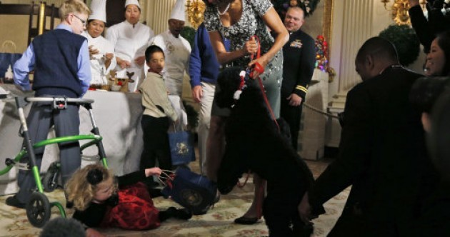 Sunny Obama takes down toddler at White House Christmas event