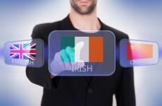 Aaron McKenna: Drop Irish or go full native – it's time to decide