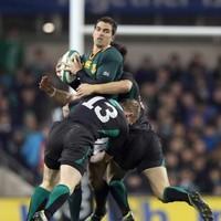 Springboks, Wallabies confirmed as Ireland's next November opposition