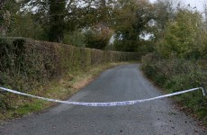 Human skull discovered in Meath