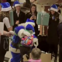 Santa-loving airline pranks delighted passengers with 'Christmas miracle'