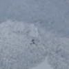 Incredibly lucky goats survive avalanche in nerve-racking video