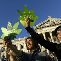 Uruguay world's first country to legalise marijuana trade