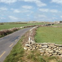 Rural hackney licences to be given out for €50
