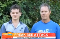 Watch this Dad's hilarious response to his son being attacked by bees