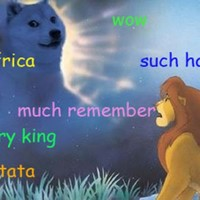 Introducing Doge, the internet meme which has everybody talking like idiots
