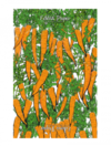 Christmas wrapping paper that lets you grow your own