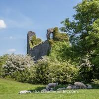 Hidden Ireland: Where to get in your St Stephen's Day walk