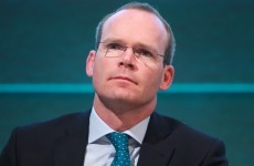 'No major welfare problem in horse sector' – Coveney