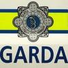 Cork club mourns loss of 'dedicated servant' killed in car crash