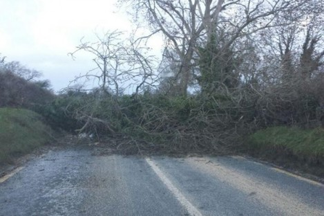 Ballymore Road between Punchestown and Naas this morning. This has since been cleared.