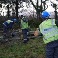 Around 800 customers to remain without power overnight in wake of St Stephen's Day storm