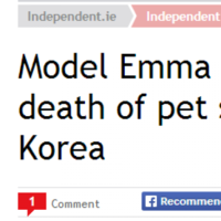 Stop! 2013 has a last-minute winner for 'weirdest Irish headline'