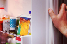 Have you ever accidentally put your phone in the fridge?
