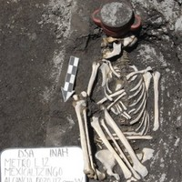 Mexican archaeologists find Aztec dog skull displayed like a human sacrifice