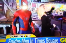 'Spiderman' appears on news show... and fails to save reporter