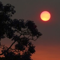 2013 was Australia's hottest year on record