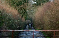 Body of man found in a drain in Co Offaly has been identified