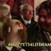 New Muppets trailer brilliantly uses dopey tweets to promote movie