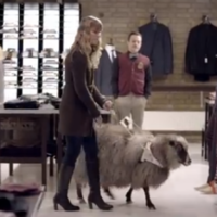 Brilliant advert for guide dogs imagines other animals in their place