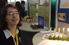 """Everyone has worked so hard"" - why teens love the Young Scientist exhibition"