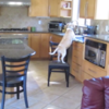 Master-thief dog rearranges furniture to steal chicken nuggets