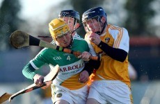 Good start for new boss Brian Whelehan as Offaly rally to beat Antrim