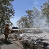 One dead as Australian blaze razes around 50 homes