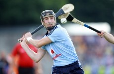 Dublin hurlers welcome Alan McCrabbe back to the fold for 2014 season