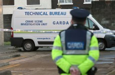Woman arrested over violent death of Vincent Maher in Finglas