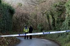 Gardaí hunt for two men who fled the scene of Tallaght killing