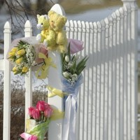 Teenagers accused over Phoebe Prince suicide prepared to strike plea deals: report