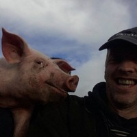 Ridiculously photogenic pig owns this #felfie